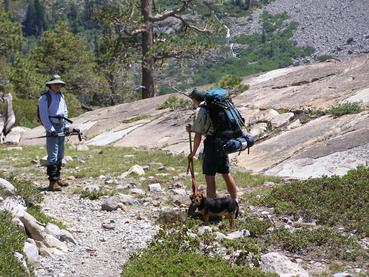 A wilderness ranger accompanied by a small dog on a leash talks to a hiker on a rocky trail.